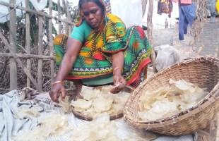 গোলজান বিবি টিকিয়ে রেখেছেন একটি পরিবার