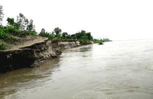 নদী ভাঙন প্রতিরোধে দ্রুত কার্যকর পদক্ষেপ নিন