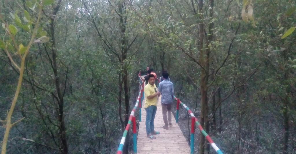 Ruposhi Mangrove (3)