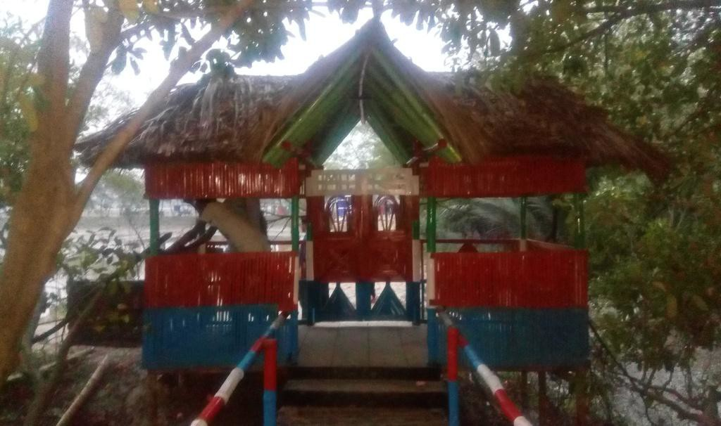Ruposhi Mangrove (6)