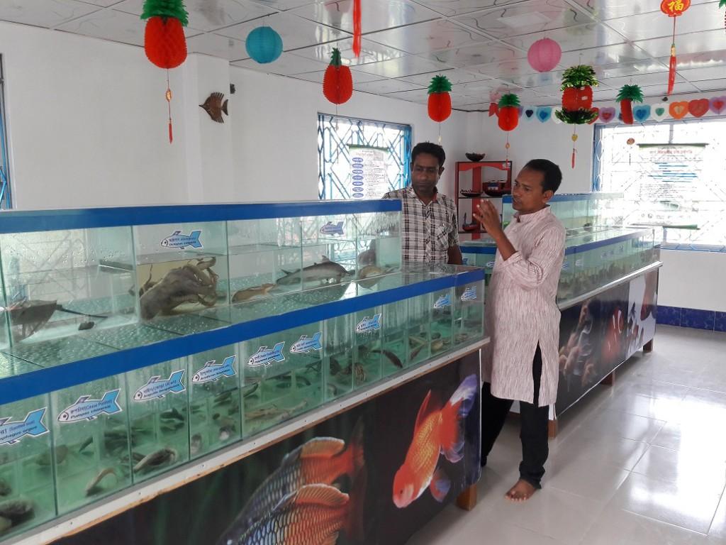 Satkhira abdus Samad fish Museum (8)