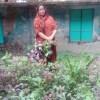 পারিবারিক পুষ্টির চাহিদা মেটাচ্ছে রুবি খাতুনের সবজি বাগান