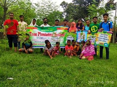 tree contest-