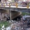 শ্যামনগরের আদি যমুনা: খনন হলে একটি সম্ভাবনাময় স্থান হতে পারে