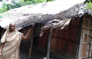 কেমন আছেন গোপালপুর গ্রামের ঋষি পরিবারগুলো?