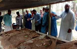 হাওরাঞ্চলের কৃষকরা হাওরে নিরাপদ খাদ্য উৎপাদন করতে চায়