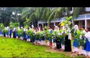 'কার্বন নিঃসরণ ও অক্সিজেন নিশ্চিত করণে কৃষক সংগঠনের বৃক্ষ রোপণ