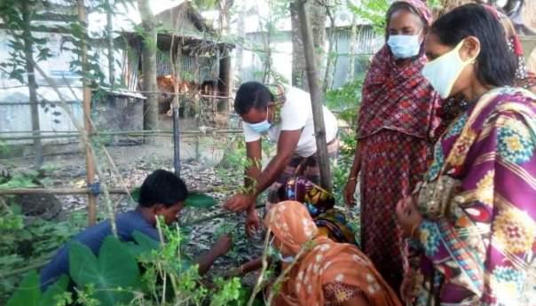 নেত্রকোনার নগুয়া গ্রামের উন্নয়নে কৃষক সংগঠনের নানা উদ্যোগ