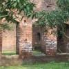 শ্যামনগরের লবণাক্ততার প্রভাবে ধ্বংসের পথে ঐতিহাসিক স্থান
