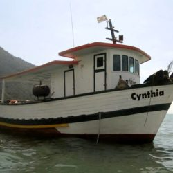 barco-cynthia_-1-1-700x511-1