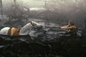 Poesía en Bardulias: Cuando así caigas