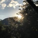 Poesía en Bardulias: Verano, verano, verano