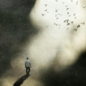 Poesía en Bardulias: Recordaréis III