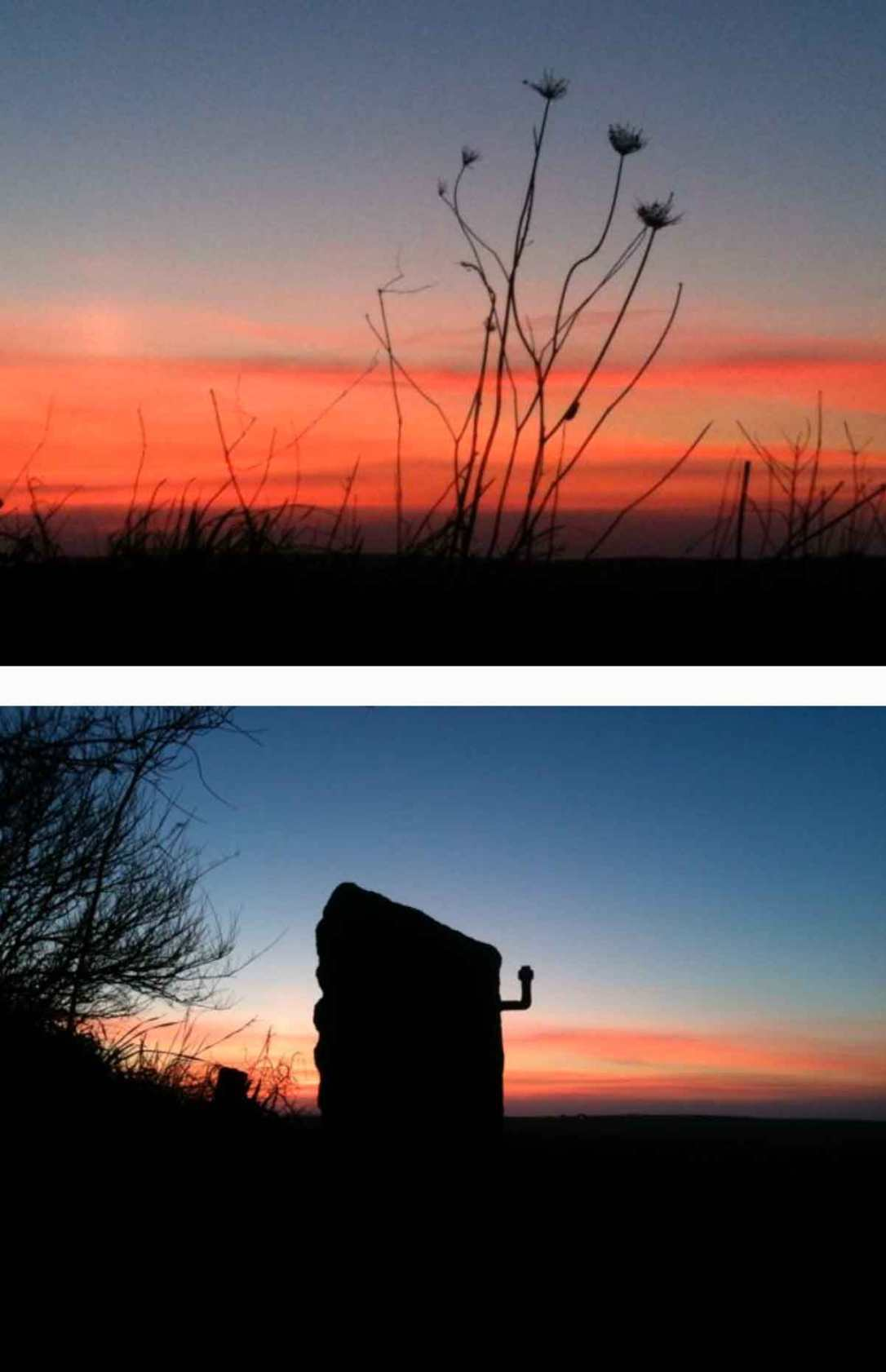wildflowers and gate post silhouetted on a deep orange sunset at barefoot glamping cornwall