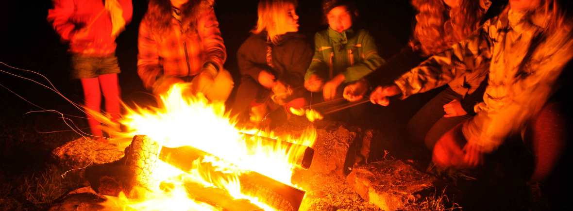 kids toasting marshmallows around a blazing camp fire at night