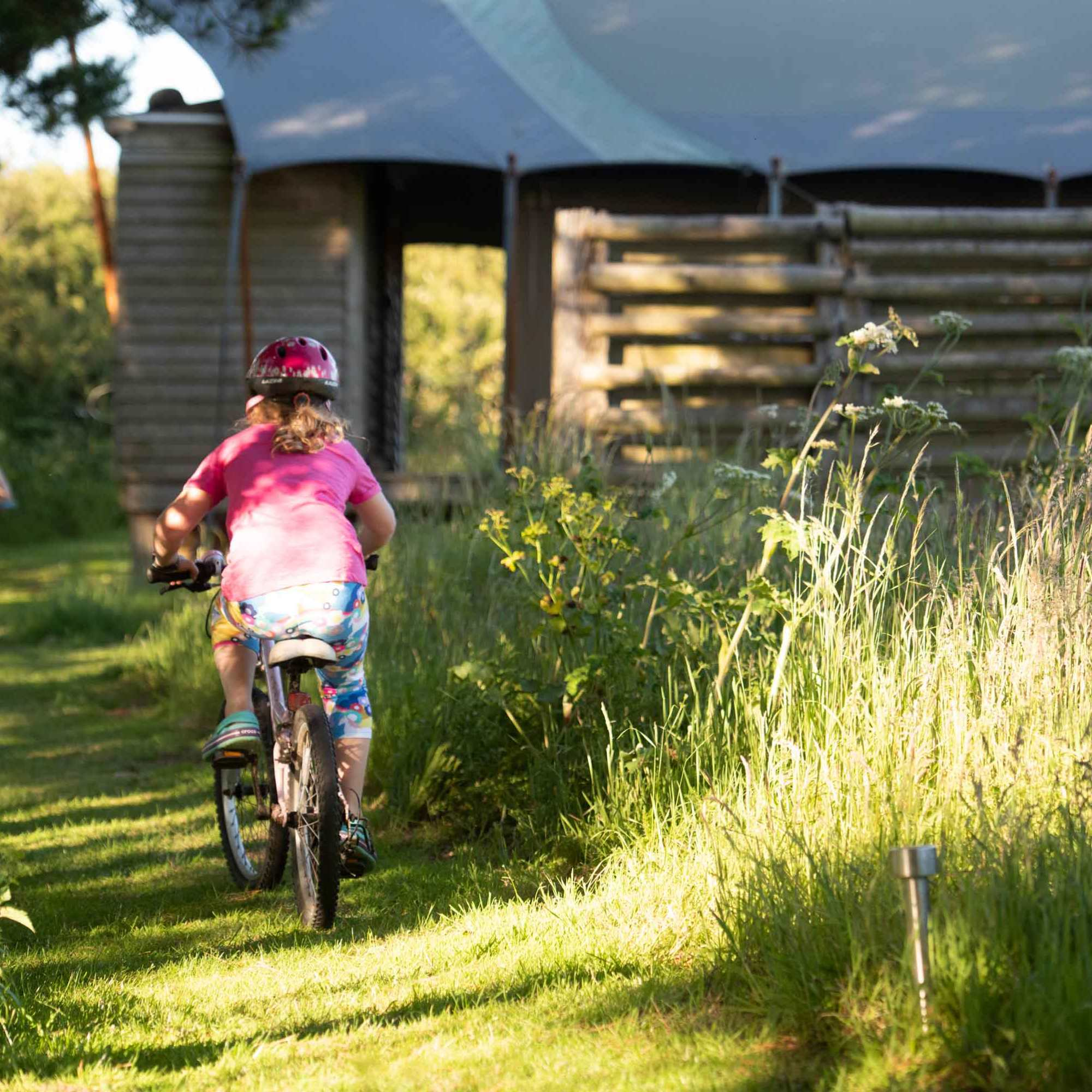 kids riding their bikes on the mown path towards woody safari tent