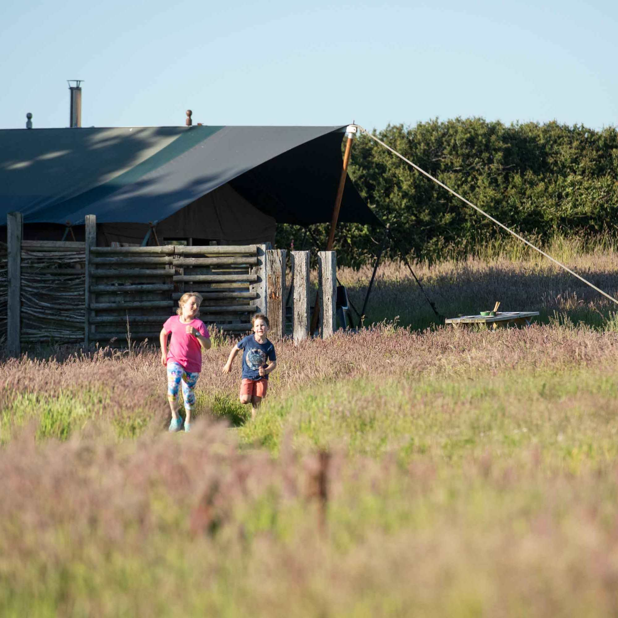 kids running along the mown path from Woody safari tent