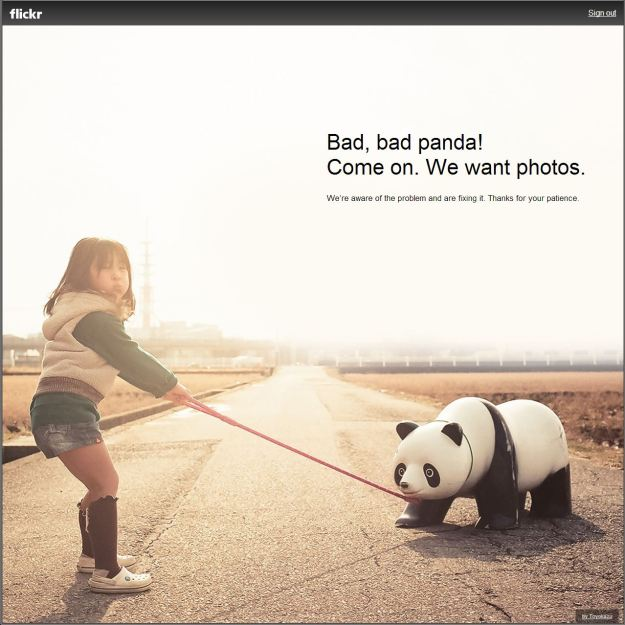 Flickr's equivalent to the Twitter Fail Whale - Bad, Bad Panda!