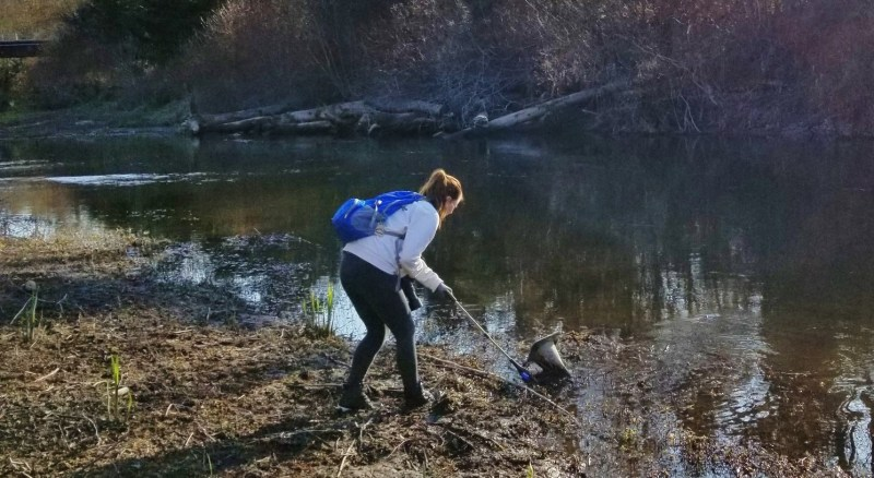 Sammamish River Trail Cleanup