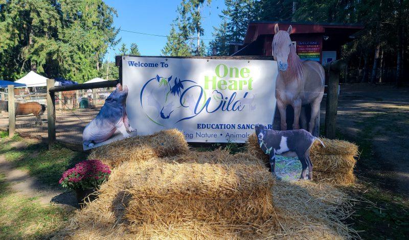 One Heart Wild's Goats & Floats Event