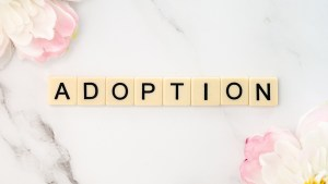 Guest Blogger Big Daddy on Adoption
