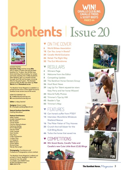 Contents Issue 20