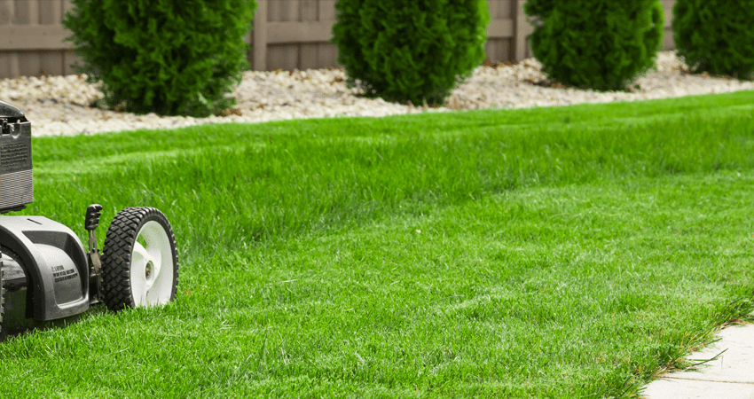 lawn care kansas city independence blue springs lees summit