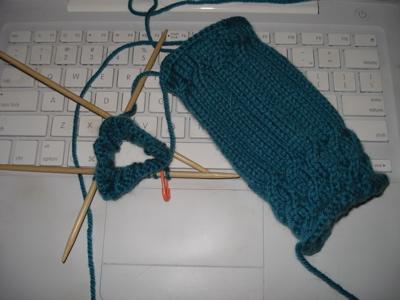 fetching-turquoise-ip.jpg