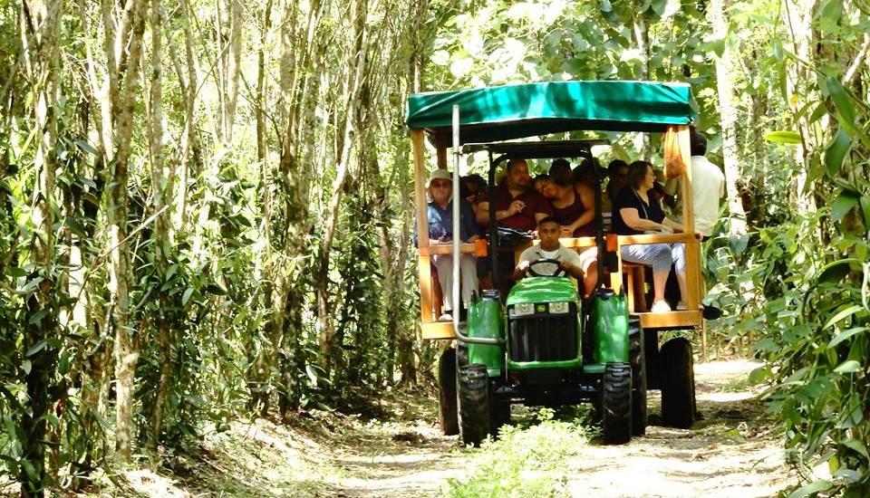 Belize Spice Farm and Botanical Gardens
