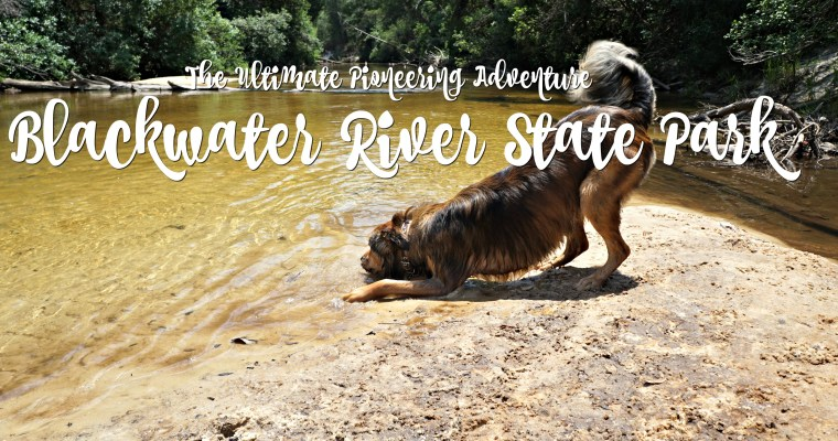 The Ultimate Pioneering Adventure: Blackwater River State Park