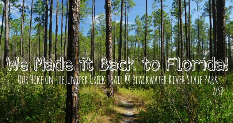 Goodbye Kansas, Hello Florida! Juniper Creek Trail Day Hike