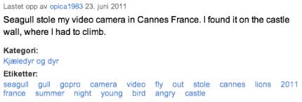 Seagull GoPro meta