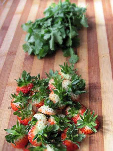 Strawberries and coriander