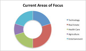 Barenberg Capital Partners. Areas of Focus