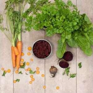 9 Barf Tk Obst & Gemüse