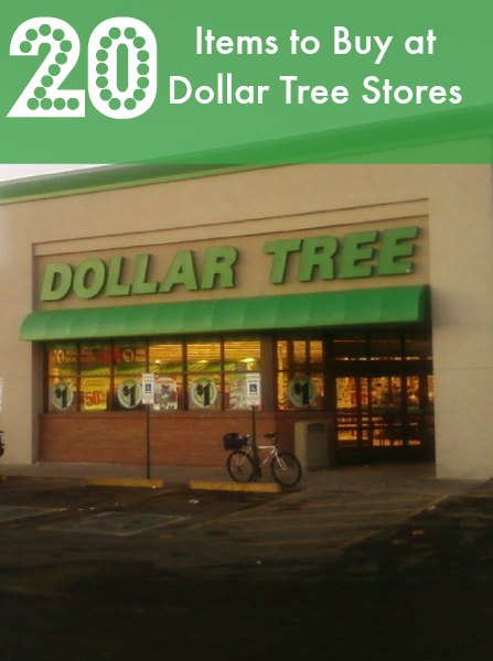 Dollar Tree 20 Items You Should be Buying at The Dollar Tree