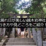 西宮の越木岩神社!アクセス方法と幻想的な木漏れ日をご紹介!