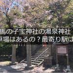 湯泉神社は有馬の子宝神社!専用駐車場は?あるの?ないの?
