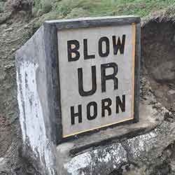 Blow-Your-Horn