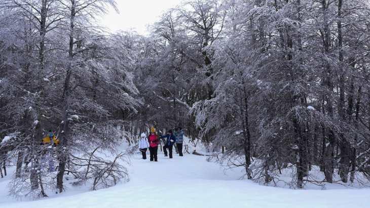 Nieve al Límite