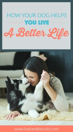 How your dog helps you live a better life.