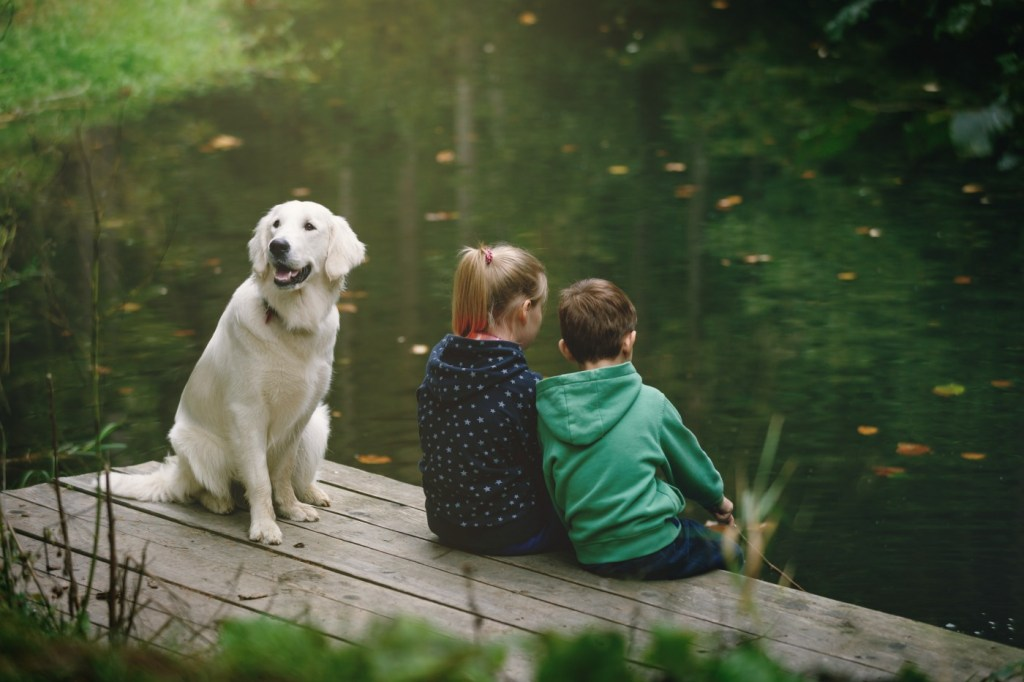 kids and dog sitting by lake