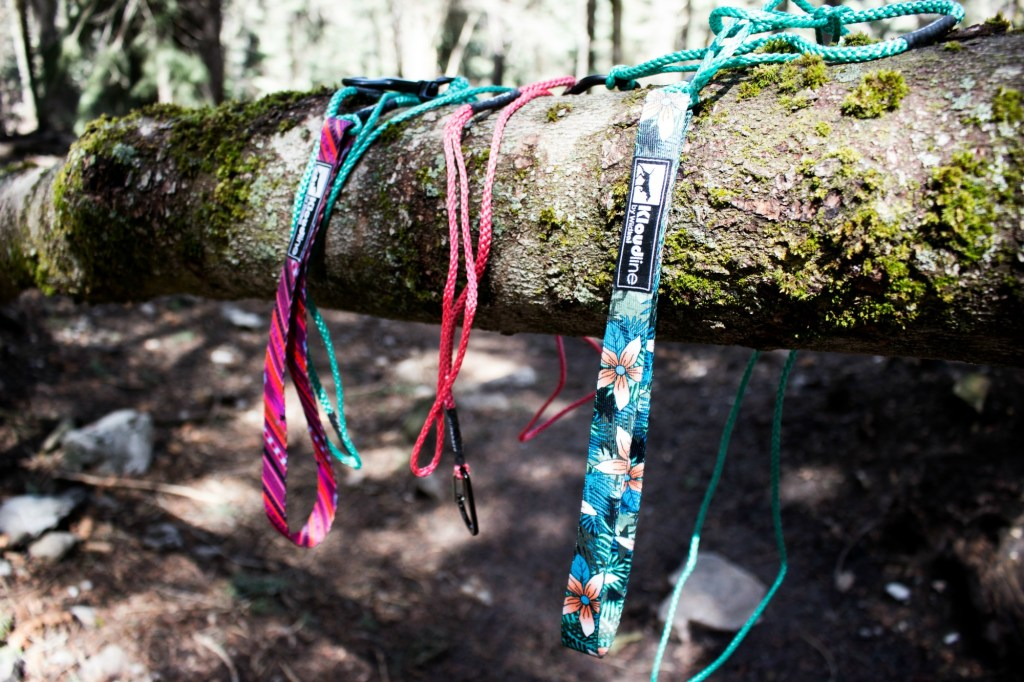 colorful, lightweight dog leashes