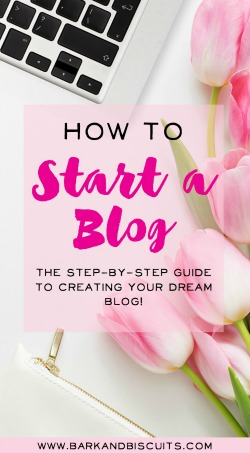 How to Start a Blog - The Step-By-Step Guide
