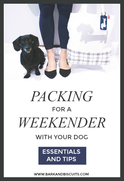 Packing For a Weekender With Your Dog. All The Essentials and Tips!