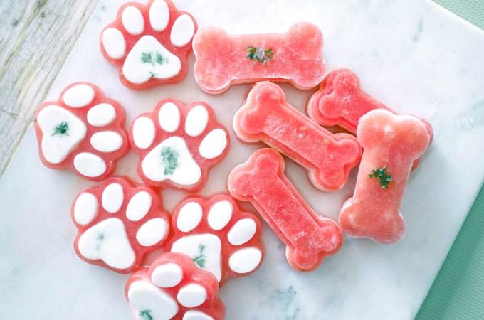 Mouthwatering Watermelon Dog Treats