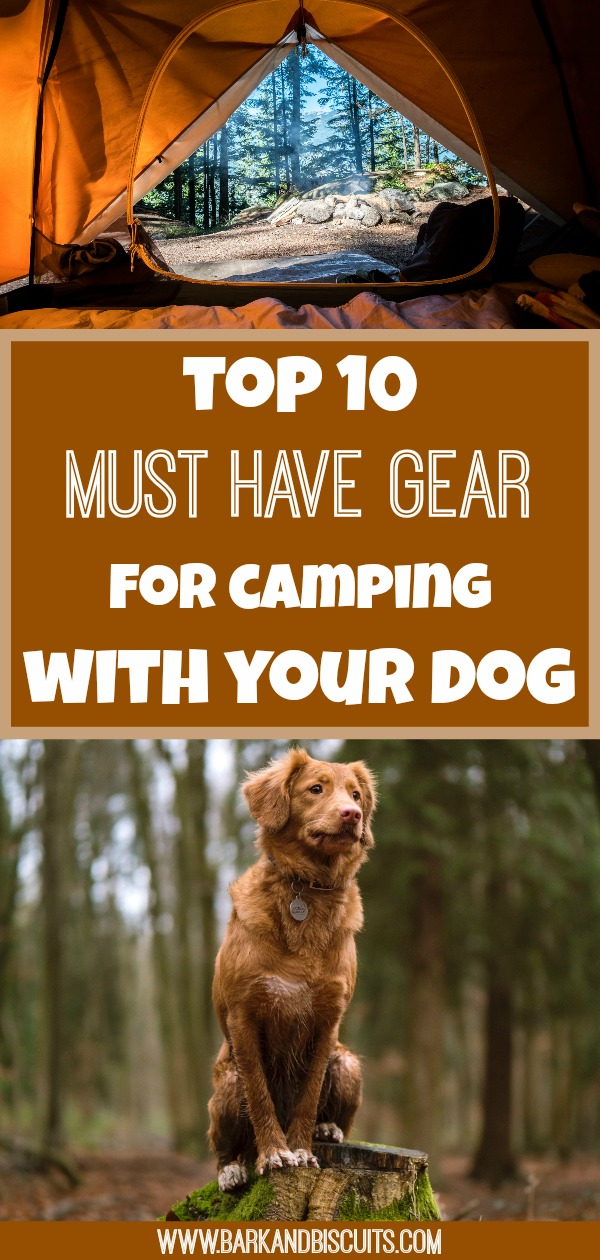 Camping With Dogs - Top 10 Must-Have Gear. The best gear to make camping with your dog a success! #camping #campingwithdogs #hikingwithdogs