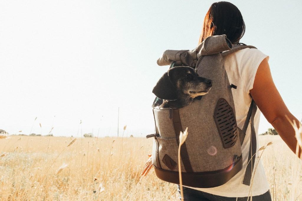 Rucksack Dog Carrier