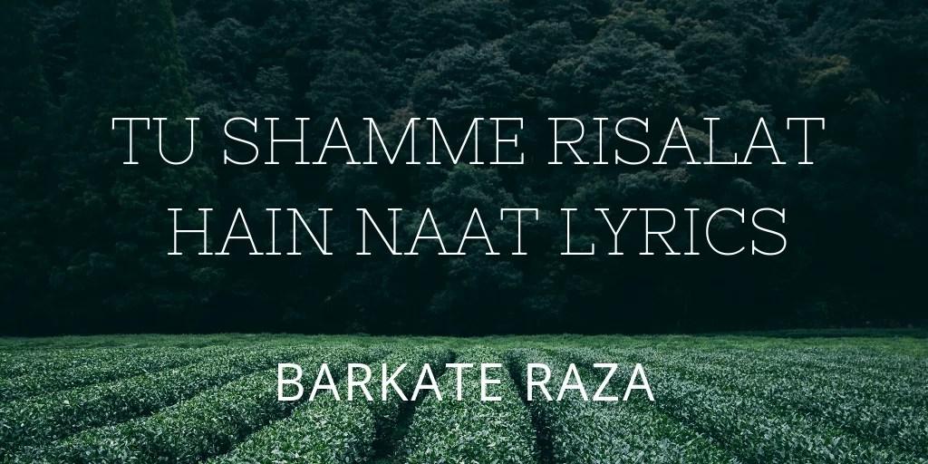 tu shamme risalat hai   Muhammad Owais Raza Qadri