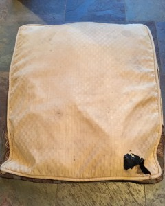 Hole in Costco Dog Bed